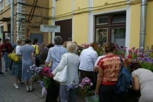 Phlox Verkaufsstände in St. Petersburg
