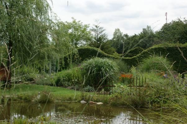 Newsletter viii 2011 filigrane dauerbl her sarastro for Was fressen fische im teich