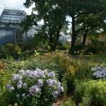 Botanischer Garten in St. Petersburg mit Tropenhaus im viktorianischen Stil