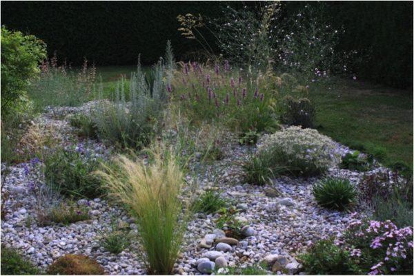 pflanzen fur kiesgarten – reimplica,